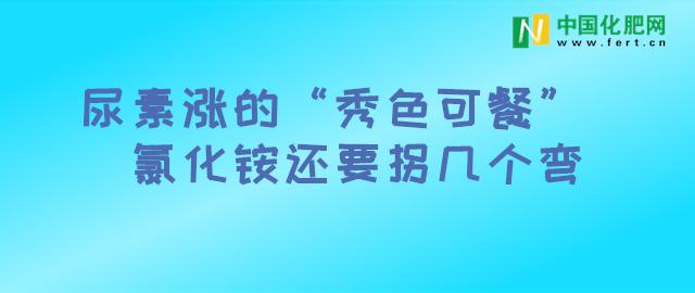 【中肥通讯社】尿素涨的秀色可餐 氯化铵还要拐几个弯