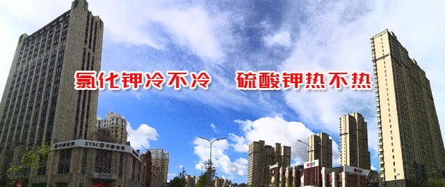 【中肥通讯社】氯化钾冷不冷 硫酸钾热不热