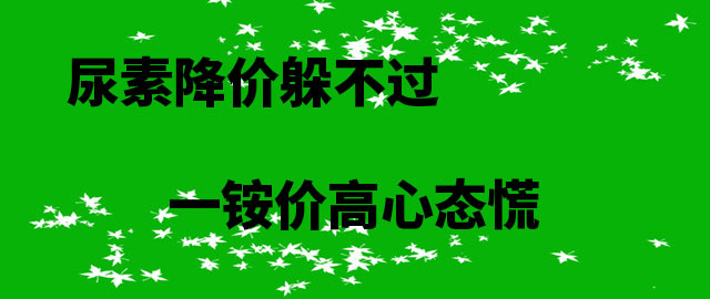 【中肥通讯社】尿素降价躲不过 一铵价高心态慌