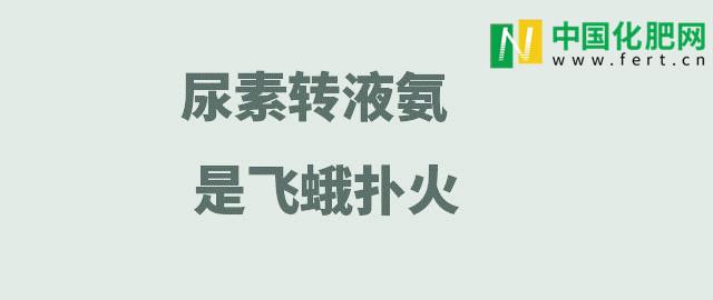 【中肥通讯社】尿素转液氨 是飞蛾扑火
