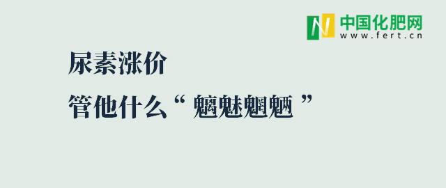 """【中肥通讯社】尿素涨价 管他什么""""魑魅魍魉"""""""