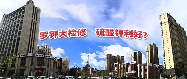 【中肥通讯社】罗钾大检修 硫酸钾利好?