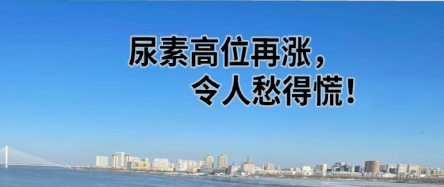 【中肥通訊社】尿素高位再漲,令人愁得慌!